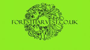 Forest Harvest Products